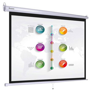 Instahibit Manual Pull Down Projection Screen White